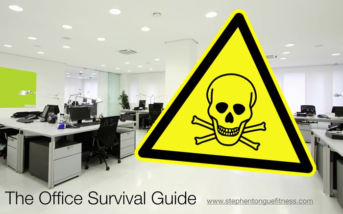 the office survival guide image